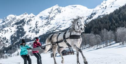 Aravis équitation